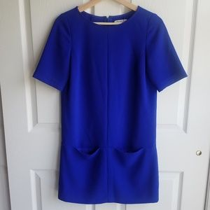 Broadway & Broome Royal Blue Shift Dress Size 0